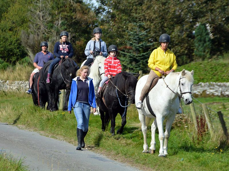 Pony Treks at Brighouse Bay Holiday Park